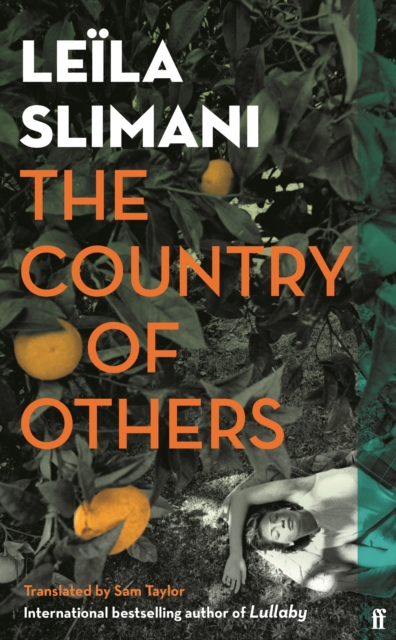 Image for The Country of Others