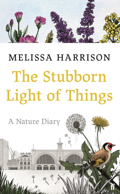 Cover for: The Stubborn Light of Things : A Nature Diary