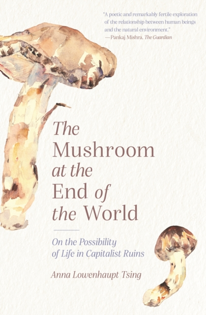 Image for The Mushroom at the End of the World : On the Possibility of Life in Capitalist Ruins
