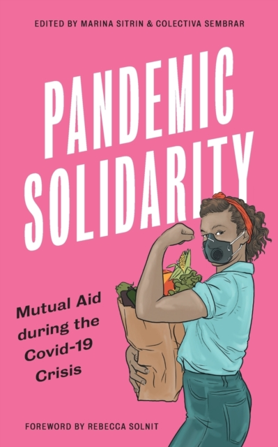 Image for Pandemic Solidarity : Mutual Aid during the Covid-19 Crisis