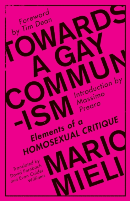 Cover for: Towards a Gay Communism : Elements of a Homosexual Critique