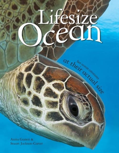 Lifesize Ocean (Hardcover), Ganeri, Anita, Jackson-Carter, Stuart. 9780753436349