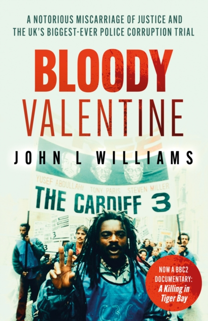Image for Bloody Valentine : The Story of Britain's Worst Miscarriage of Justice