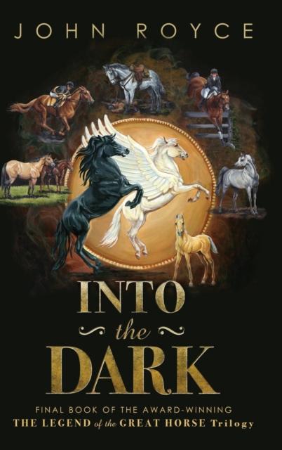 INTO THE DARK                           , Royce, John Allen, 9780...