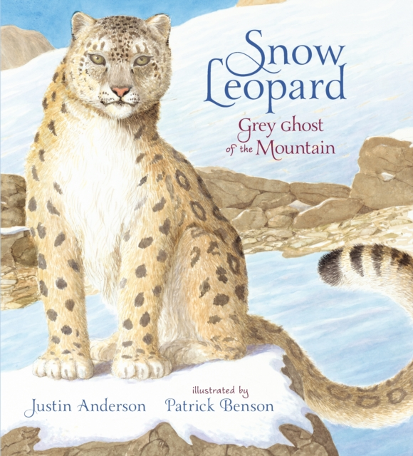 Cover for: Snow Leopard: Grey Ghost of the Mountain