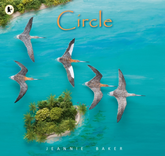 Cover for: Circle
