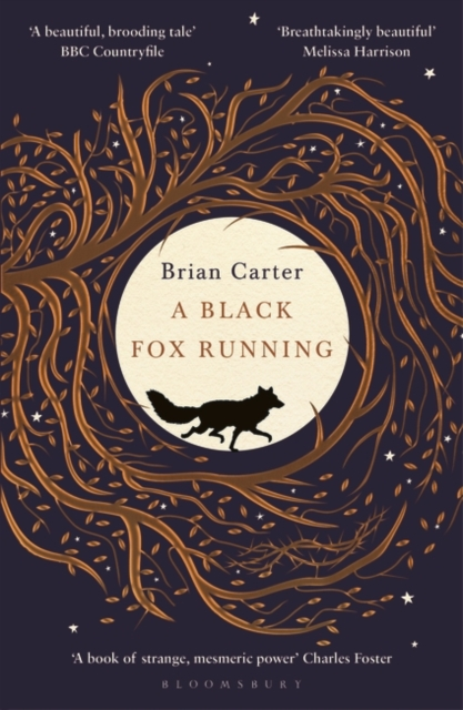 Cover for: A Black Fox Running