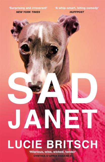 Image for Sad Janet : A whip-smart, hilarious satire of our obsession with happiness