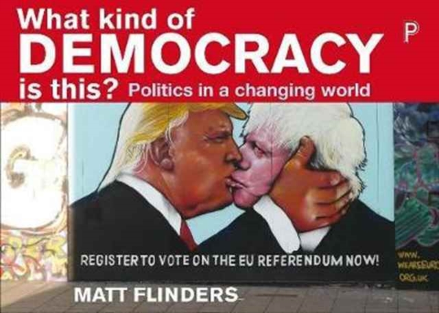 Image for What Kind of Democracy Is This? : Politics in a Changing World