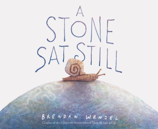 Cover for: A Stone Sat Still