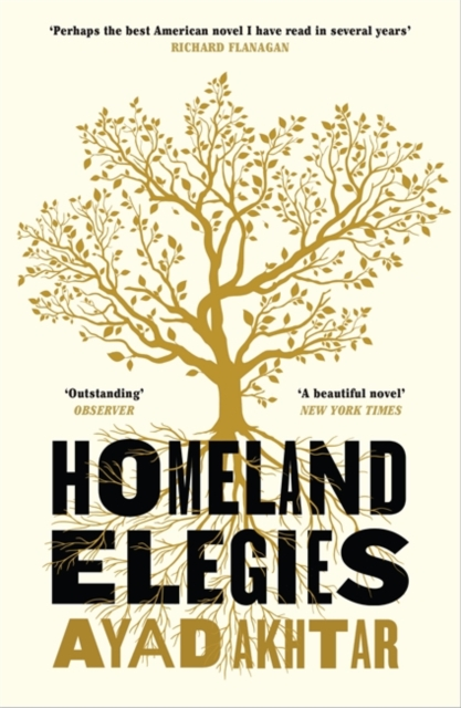 Image for Homeland Elegies
