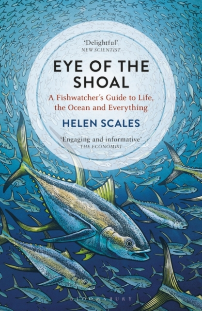 Image for Eye of the Shoal : A Fishwatcher's Guide to Life, the Ocean and Everything