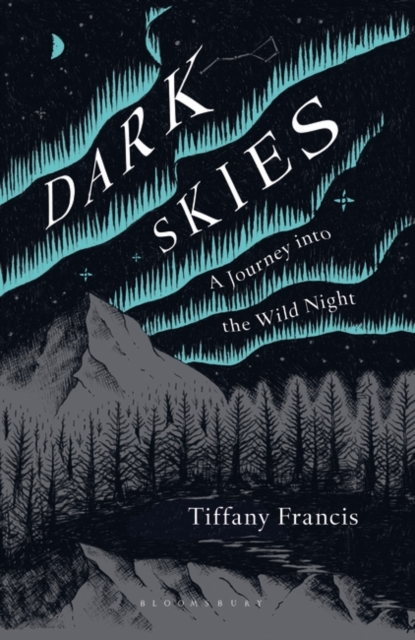 Cover for: Dark Skies : A Journey into the Wild Night