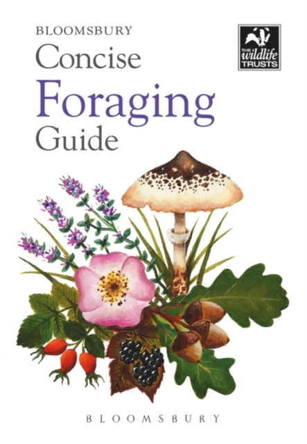 Image for Concise Foraging Guide