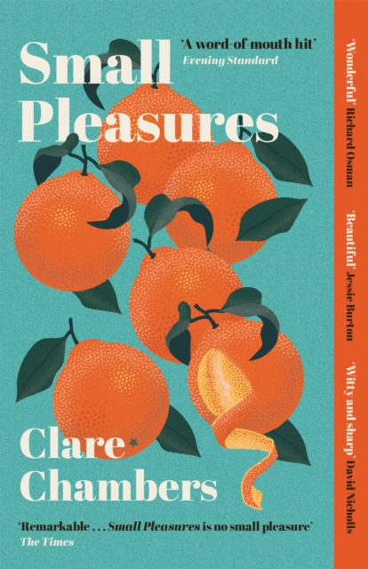Cover for: Small Pleasures : Longlisted for the Women's Prize for Fiction 2021
