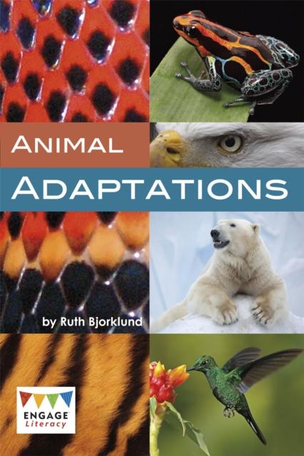 Animal Adaptations, Bjorklund, Ruth, 9781474747059
