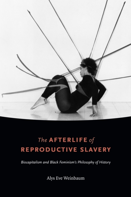 Cover for: The Afterlife of Reproductive Slavery : Biocapitalism and Black Feminism's Philosophy of History