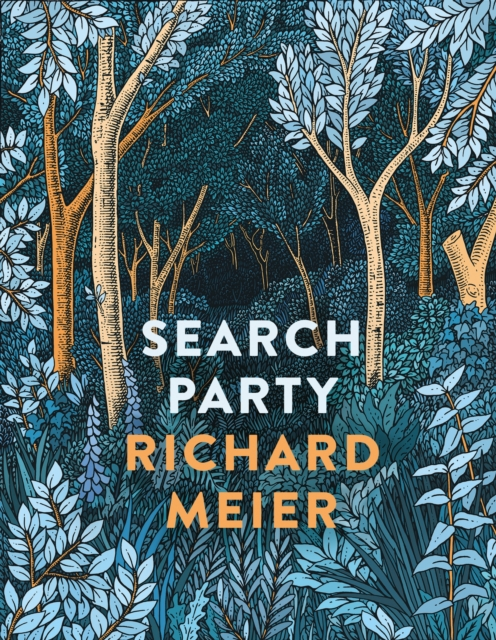 Cover for: Search Party
