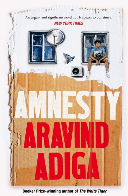Cover for: Amnesty