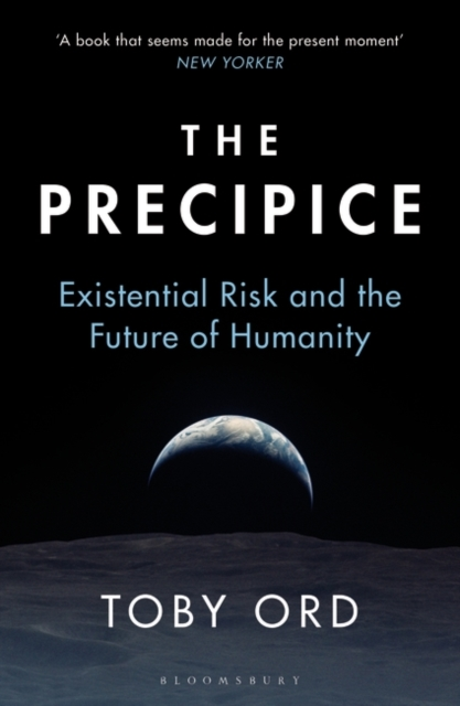 Cover for: The Precipice : 'A book that seems made for the present moment' New Yorker