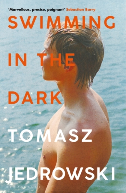 Cover for: Swimming in the Dark : 'One of the most astonishing contemporary gay novels we have ever read ... A masterpiece' - Attitude
