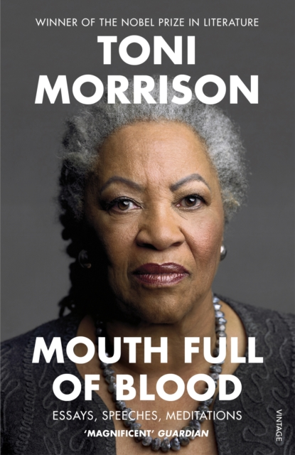 Cover for: Mouth Full of Blood : Essays, Speeches, Meditations
