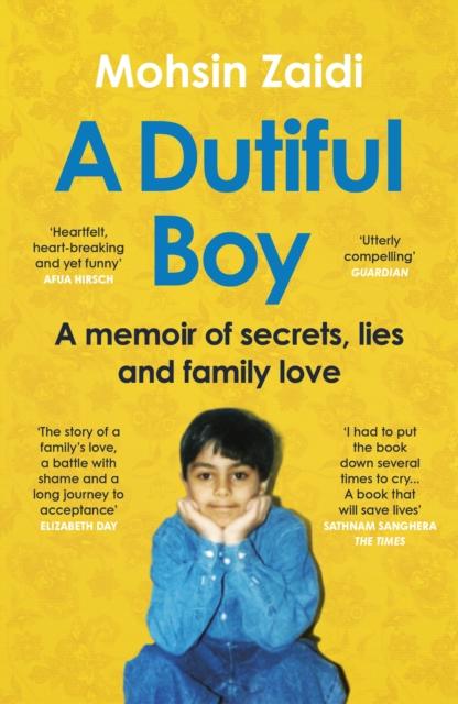 Image for A Dutiful Boy
