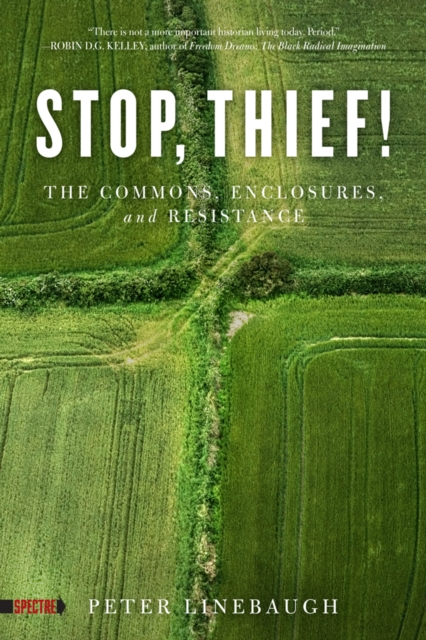 Cover for: Stop, Thief! : The Commons, Enclosures, And Resistance
