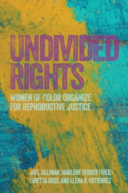 Image for Undivided Rights : Women of Color Organizing for Reproductive Justice