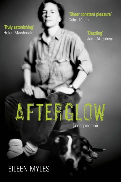 Image for Afterglow : A Dog Memoir