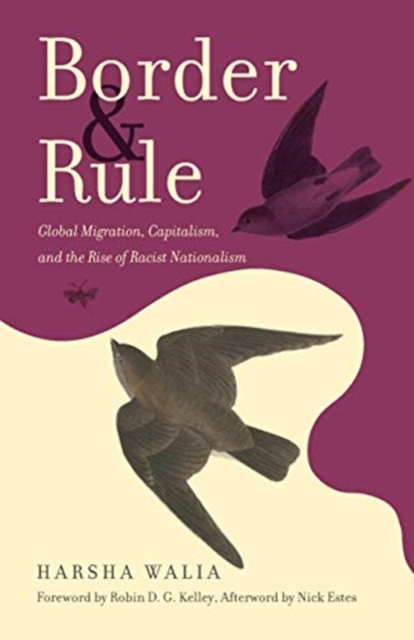 Cover for: Border and Rule : Global Migration, Capitalism, and the Rise of Racist Nationalism