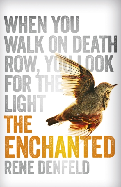 Cover for: The Enchanted