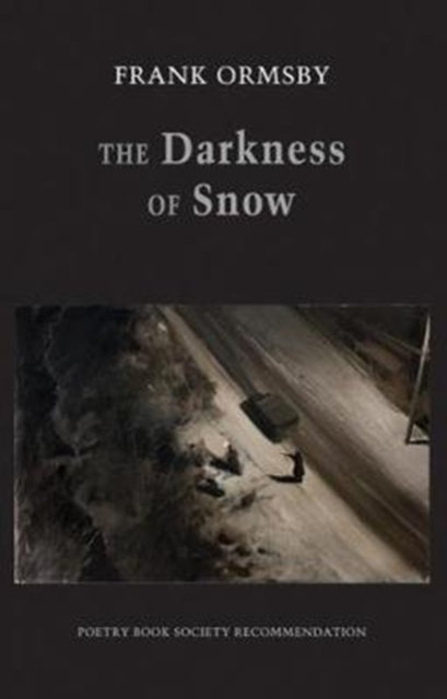 Cover for: The Darkness of Snow