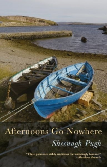 Image for Afternoons Go Nowhere