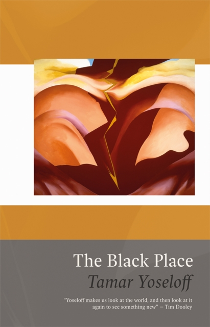 Cover for: The Black Place