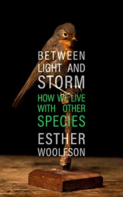 Cover for: Between Light and Storm : How We Live With Other Species