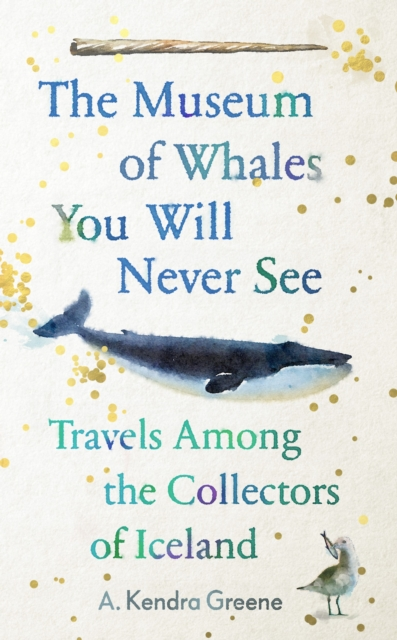 Image for The Museum of Whales You Will Never See : Travels Among the Collectors of Iceland