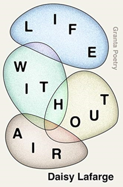 Image for Life Without Air