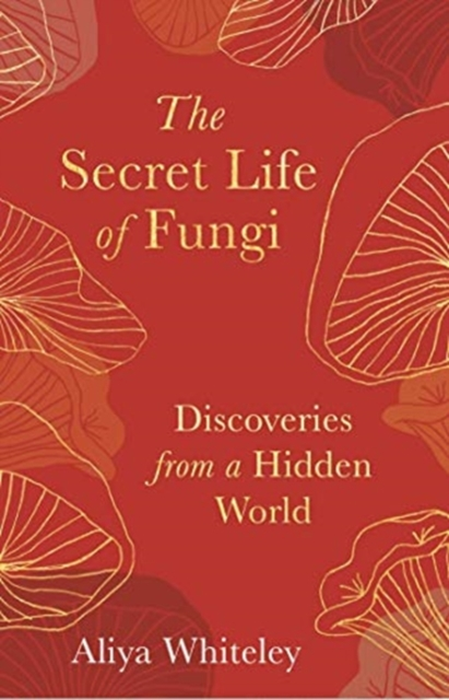 Cover for: The Secret Life of Fungi : Discoveries from a Hidden World