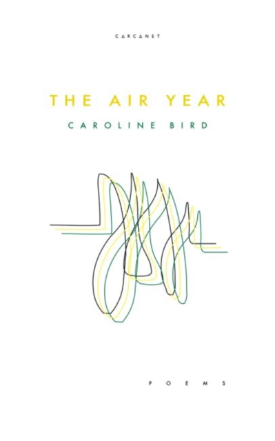 Cover for: The Air Year