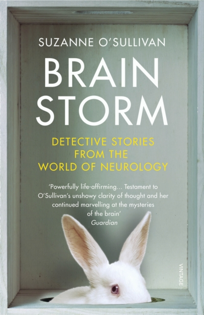 Cover for: Brainstorm : Detective Stories From the World of Neurology
