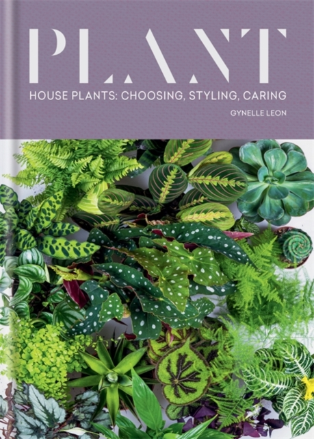 Cover for: Plant : House plants: choosing, styling, caring