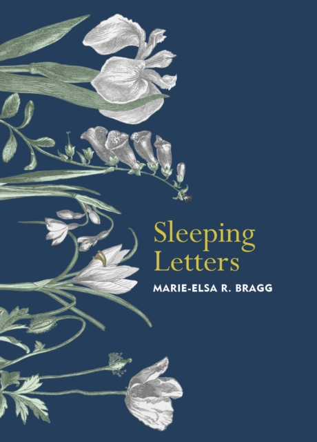 Cover for: Sleeping Letters