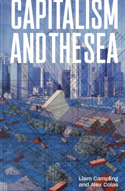 Cover for: Capitalism and the Sea : The Maritime Factor in the Making of the Modern World