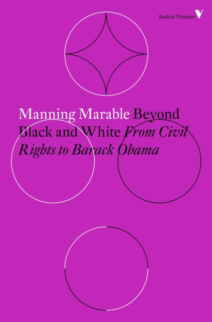 Cover for: Beyond Black and White : Rethinking Race in American Politics and Society