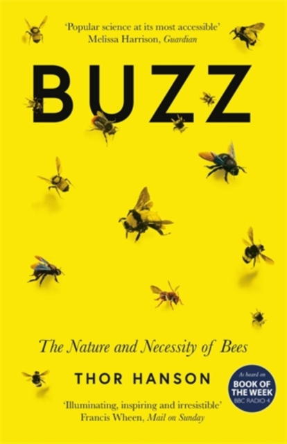 Cover for: Buzz : The Nature and Necessity of Bees