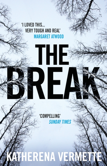 Cover for: The Break