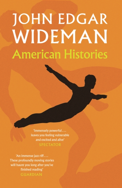 Cover for: American Histories