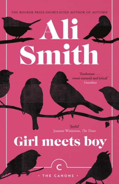 Cover for: Girl Meets Boy
