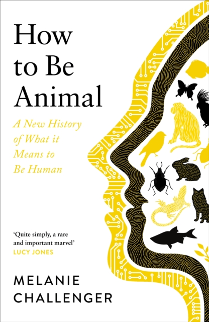 Cover for: How to Be Animal : A New History of What it Means to Be Human